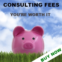 Consulting Fees Guide ad
