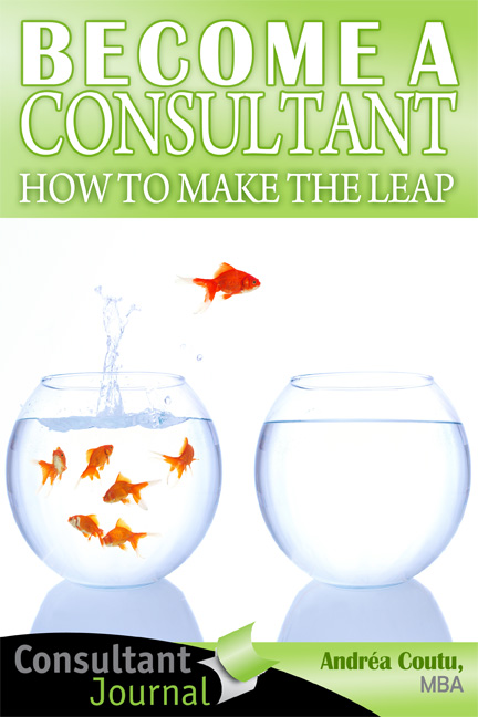 Become a Consultant course
